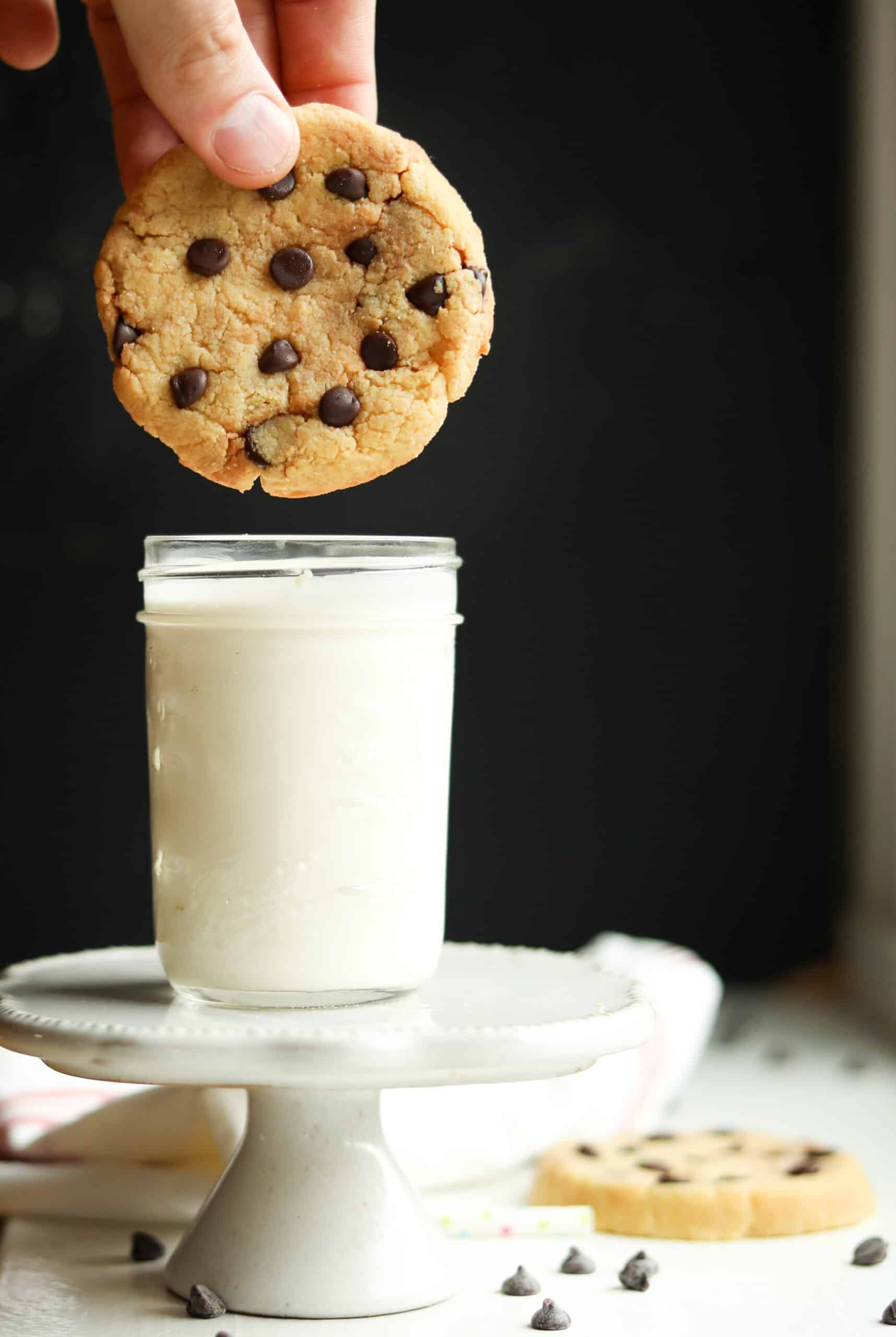 A chocolate chip cookie about to be dipped into milk.