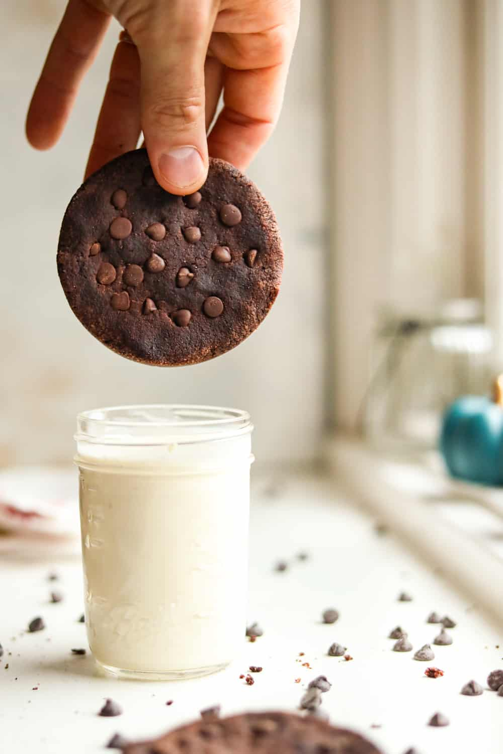 A double chocolate chip cookie about to be dunked in milk.